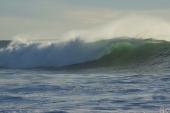Hawaiibølge_800_DSC01715