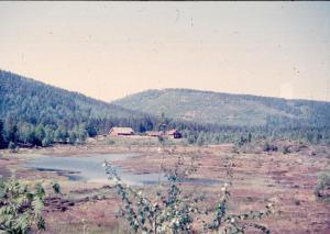 Rennesik 1963