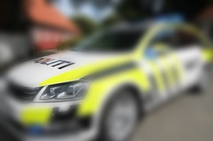 politibil-hererpolitietsnyebiler_300_red