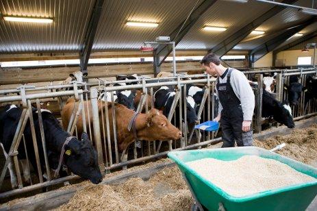 avloser-i-landbruket_pr_c52e4558